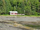 000 Bear Cove - Photo 50
