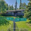 10704 Main Tree Drive - Photo 18