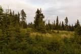 33070 Conifer Circle - Photo 1