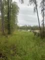 26739 Talkeetna Spur Road - Photo 9