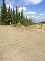 MP 229.50 Parks Highway - Photo 48