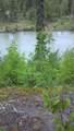 13653 Wilderness Rim Rd. - Photo 2