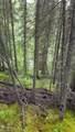 13653 Wilderness Rim Rd. - Photo 3