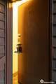 9740 Vanguard Drive - Photo 5