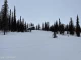 100 Trinity Lake - Photo 15