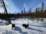 7360 Narnia Circle - Photo 25