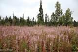D3 Alaskan Wildwood Ranch(R) - Photo 1
