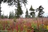 D3 Alaskan Wildwood Ranch(R) - Photo 10