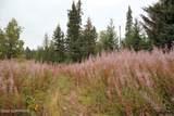 D3 Alaskan Wildwood Ranch(R) - Photo 2