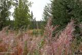 D3 Alaskan Wildwood Ranch(R) - Photo 6