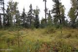 D3 Alaskan Wildwood Ranch(R) - Photo 8