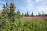 D25 Alaskan Wildwood Ranch(R) - Photo 1