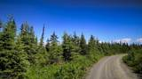 C3 Alaskan Wildwood Ranch(R) - Photo 1
