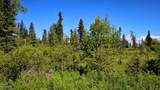 C3 Alaskan Wildwood Ranch(R) - Photo 11