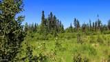 C3 Alaskan Wildwood Ranch(R) - Photo 12