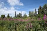 C3 Alaskan Wildwood Ranch(R) - Photo 16