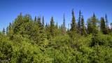 C3 Alaskan Wildwood Ranch(R) - Photo 2
