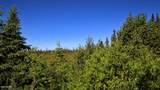 C3 Alaskan Wildwood Ranch(R) - Photo 3