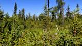 C3 Alaskan Wildwood Ranch(R) - Photo 7