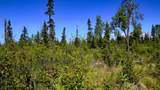 C7 Alaskan Wildwood Ranch(R) - Photo 10