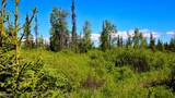 C7 Alaskan Wildwood Ranch(R) - Photo 13