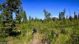 C7 Alaskan Wildwood Ranch(R) - Photo 16