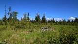 C7 Alaskan Wildwood Ranch(R) - Photo 18