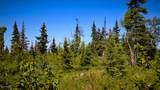 C7 Alaskan Wildwood Ranch(R) - Photo 19
