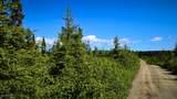 C7 Alaskan Wildwood Ranch(R) - Photo 2