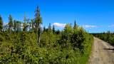 C7 Alaskan Wildwood Ranch(R) - Photo 22