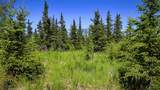 C7 Alaskan Wildwood Ranch(R) - Photo 6