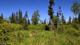 C7 Alaskan Wildwood Ranch(R) - Photo 7