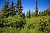 C16 Alaskan Wildwood Ranch(R) - Photo 1
