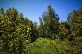 C16 Alaskan Wildwood Ranch(R) - Photo 11