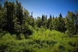 C16 Alaskan Wildwood Ranch(R) - Photo 12