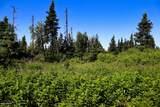 C16 Alaskan Wildwood Ranch(R) - Photo 13