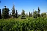 C16 Alaskan Wildwood Ranch(R) - Photo 14