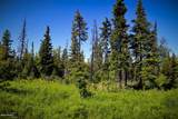 C16 Alaskan Wildwood Ranch(R) - Photo 16