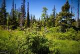 C16 Alaskan Wildwood Ranch(R) - Photo 17