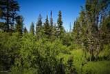 C16 Alaskan Wildwood Ranch(R) - Photo 20