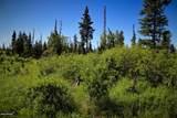 C16 Alaskan Wildwood Ranch(R) - Photo 21
