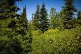 C16 Alaskan Wildwood Ranch(R) - Photo 3