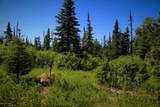 C16 Alaskan Wildwood Ranch(R) - Photo 4