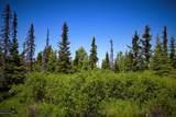 C16 Alaskan Wildwood Ranch(R) - Photo 5