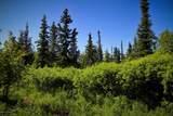 C16 Alaskan Wildwood Ranch(R) - Photo 6