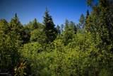 C16 Alaskan Wildwood Ranch(R) - Photo 7