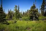 C16 Alaskan Wildwood Ranch(R) - Photo 9