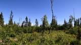 C27 Alaskan Wildwood Ranch(R) - Photo 10