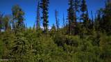 C27 Alaskan Wildwood Ranch(R) - Photo 3