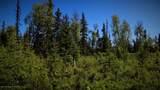 C27 Alaskan Wildwood Ranch(R) - Photo 4